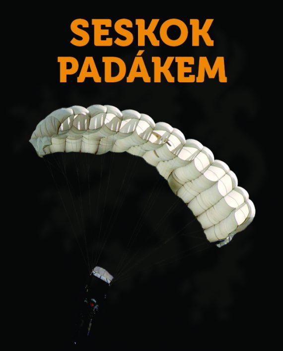 SINGLESESKOK_AVATAR